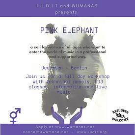 Pink elephant #1-IG POST.png