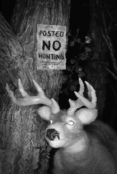 Posted No Hunting poster small.png