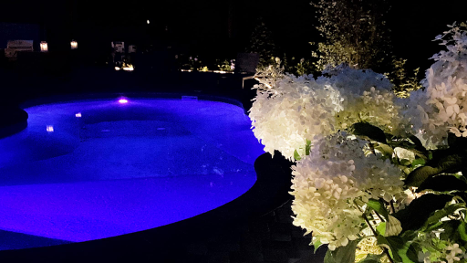 white flowers and in-ground pool with blue lights