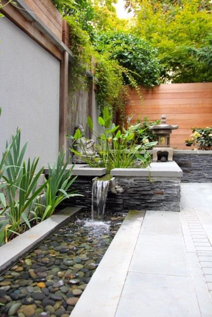 plants and small waterfall in the backyard of a residential home