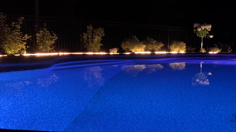 in-ground pool illuminated by blue lighting