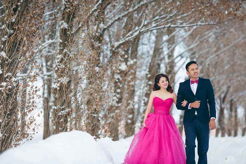 japan snow mountain white winter pink ballgown prewedding