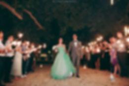 pastel green ballgown princess dress night sparkle firework garden beach wedding