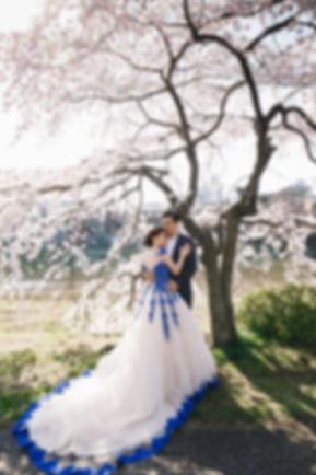 blue lace cream ballgown under the sakura tree destination wedding