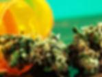 CBD Blüten / Pollinat, Silver Haze, Vanilla Kush, Caramel Candy, Lemon Hate , Purple Haze, Bubble Gum, Citrus Skunk, Q1, White Widow, Erdbeerli, Northern Light, Orange Bud,