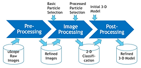 cryo-em data processing steps.png