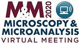 M&M Virtual Logo.jpg