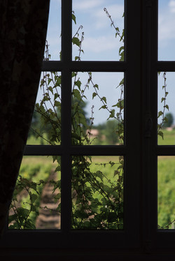 vintage chateau wedding venue in South of France, in Sauternes near Bordeaux