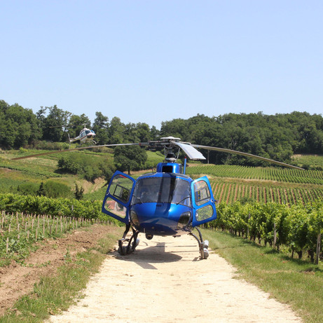 Helicopter around Bordeaux vineyard
