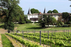 Family rental & wedding venue in French chateau with vineyards