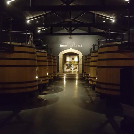 Wine Activities organisation in wine country, Bordeaux
