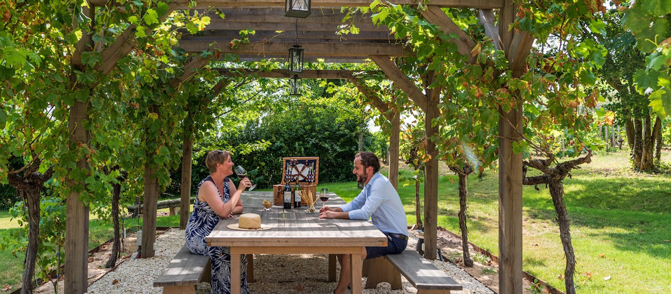 holiday rental in chateau, in French Vineyards