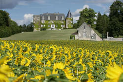exclusif property to rent for Hen party in south West of France