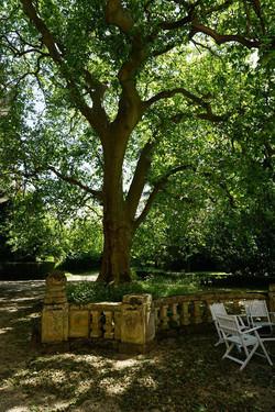 romantic Loire Valley wedding venue in chateau