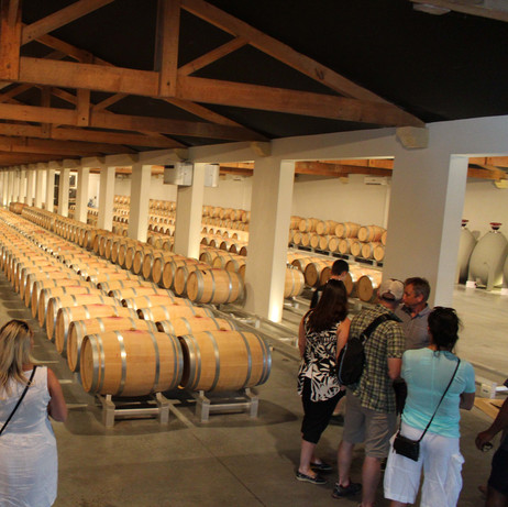 Wine tour in French Riviera