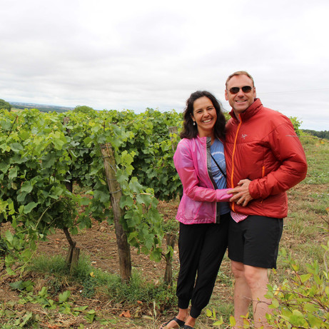 Enjoy your wine tour in France