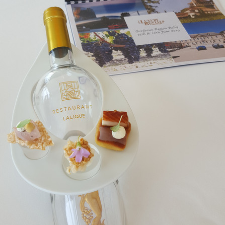 Tasting and visiting french vinyeard around Bordeaux