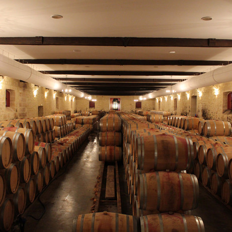 Wine tour in French wineries & Caslte