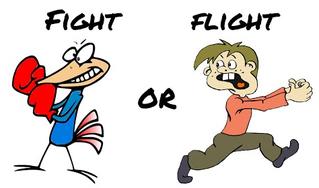 Understanding the Fight-or-Flight Response
