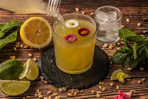 Citronnade maison au citron de Sicile à la menthe