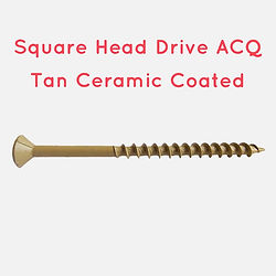 Screw-Ceramic coated.jpeg