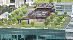 18587-Roof-Garden