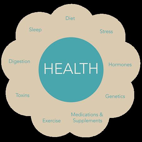 CYWB_Health_Wheel.png