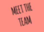 meet_the_team.png