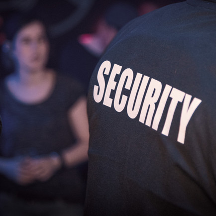 'Project Vigilant' and The Role of the Security Industry