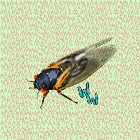 Cicadas, and Brood X!