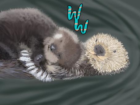 Sea Otters!!!