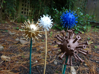 """Alliums"" for winter colour"
