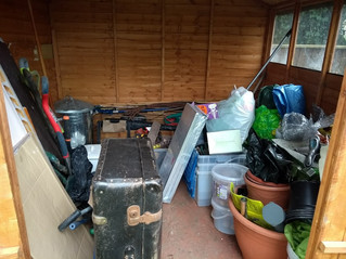 The Great Shed Tidy