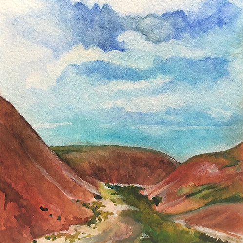 Landscape-A-Day: Painted Desert In Bloom