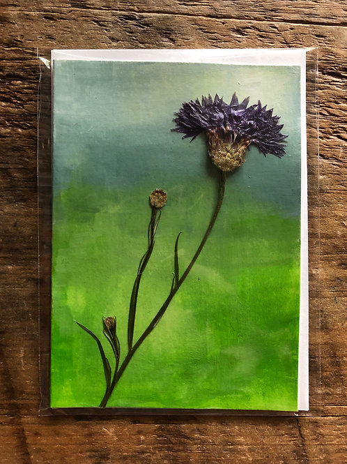 Blue Cornflower Hand-Painted Card