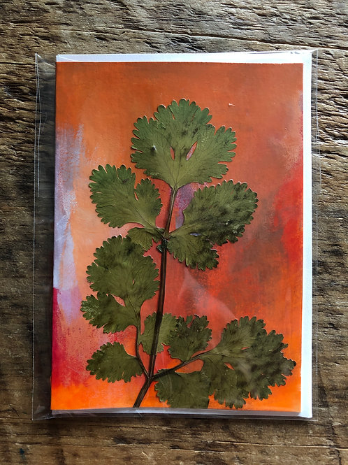 Cilantro Hand-Painted Card