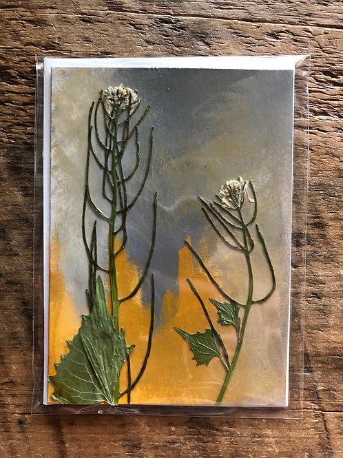 Garlic Mustard Hand-Painted Card