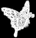 Anne Audebrand - Dessin Papillon