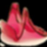 鍋蓋放置架-粉紅-02.png