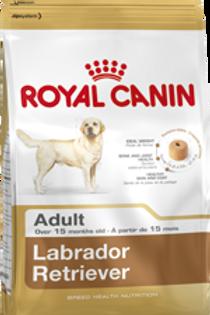 12 Kg Labrador Adult