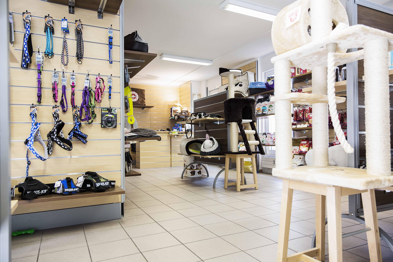 negozio_-215