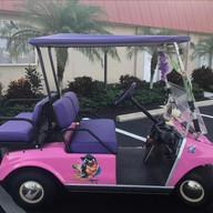 Club Car Ds Pre 2000 - Purple