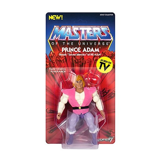 Masters of the Universe Prince Adam Action Figure