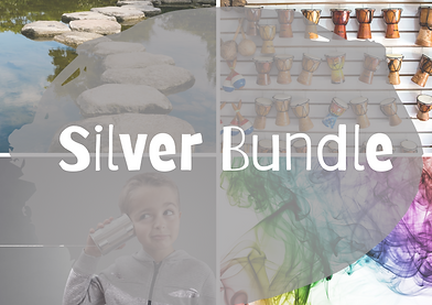 Silver Bundle.png