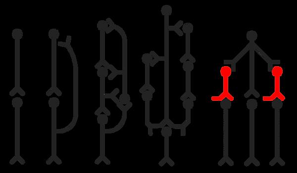 Neural Circuit.png