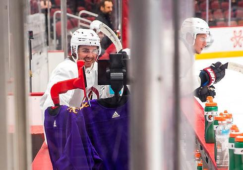 NHL Arizona Coyotes 4.jpg