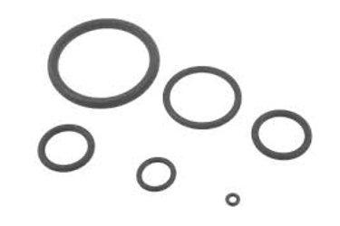 NV12MPMO310 Vision 310 PM O-ring kit