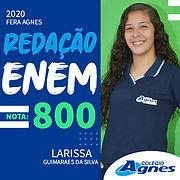 LARISSA_GUIMARÃES_DA_SILVA.jpg
