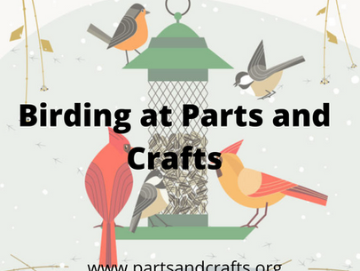 Birding at Parts and Crafts