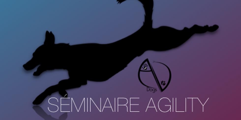 Séminaire Agility DIM 5 Juillet 2020
